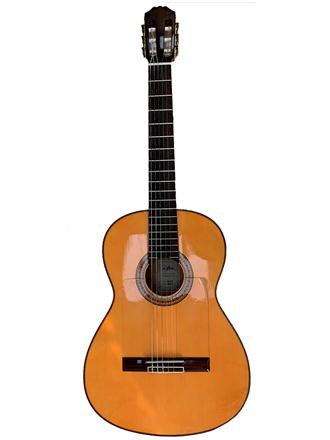 Гитара ARIA AC-70F